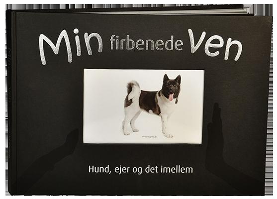 Min-firbenede-Ven_557x400